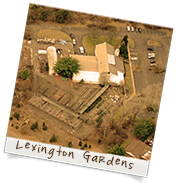Old Lexington Gardens